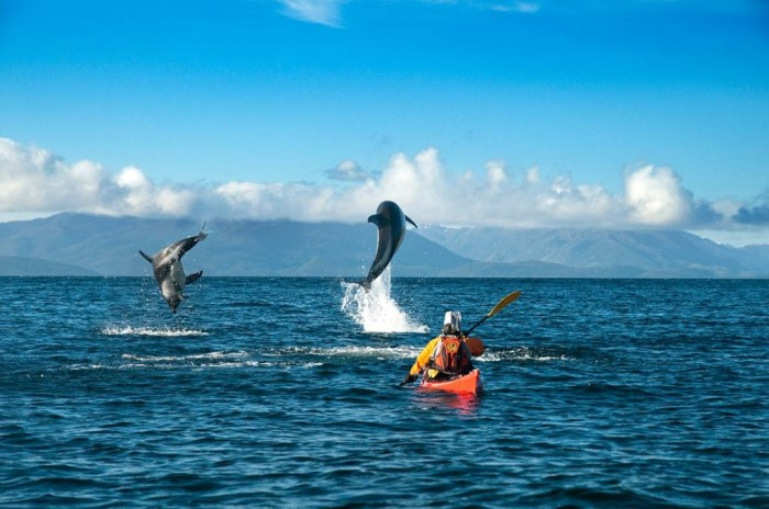 PatagoniaFaro-San-Isidro-Pta.ArenasFrancisca-Cheyre2 Adventure Travel Tips to Enjoy the Most Exciting Trip in Your Life
