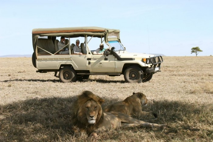 Serengeti-Tours-4-x-4Tanzania Adventure Travel Tips to Enjoy the Most Exciting Trip in Your Life