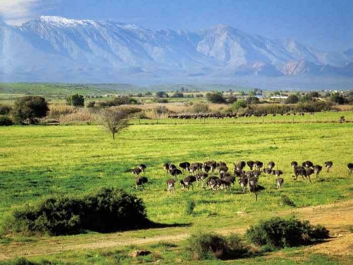 South_Africa Adventure Travel Destinations to Enjoy an Unforgettable Holiday
