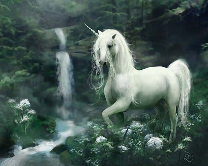 Unicorn-fantasy-30995379-1280-1024 Know 10 Points Of Information About The Unicorn