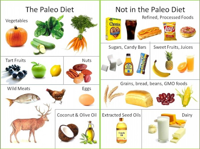 Whats-the-Paleo-Diet-3-801x600 The Guide to Paleo Diet