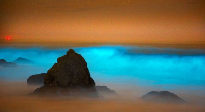 article-2312844-196CE478000005DC-889_964x541 Magnificent and Breathtaking Blue Waves that Glow at Night