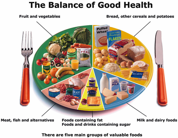 balanced-meal Training & Nutrition Insider Secrets for a Lean-Body