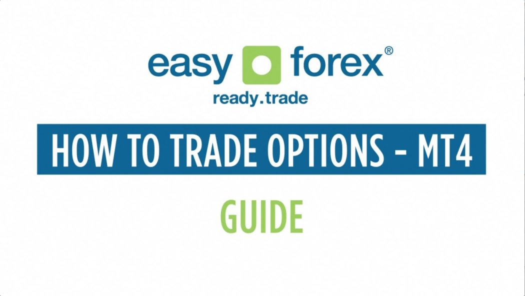 easy-forex What Information Is Included in a Background Check?
