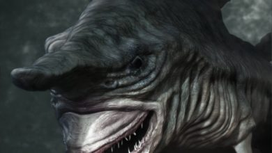 Photo of Have You Ever Seen Such a Scary & Goblin Shark with Two Faces?