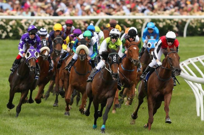 melb-cup-races Melbourne Cup Is a Rich & Prestigious Horse Race that Stops a Nation