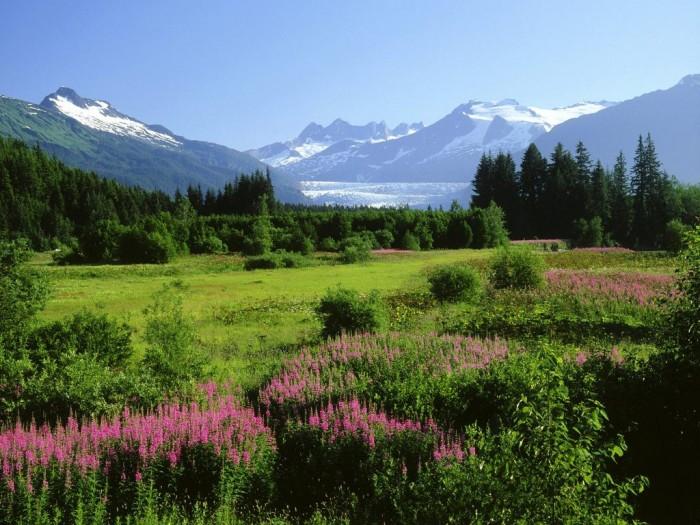 mendenhall_glacier_alaska_wallpaper-normal Adventure Travel Destinations to Enjoy an Unforgettable Holiday