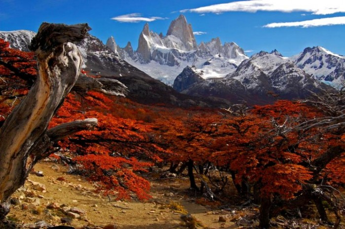 patagonia-argentina Adventure Travel Destinations to Enjoy an Unforgettable Holiday