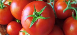 7 Amazing Health Facts About Tomatoes