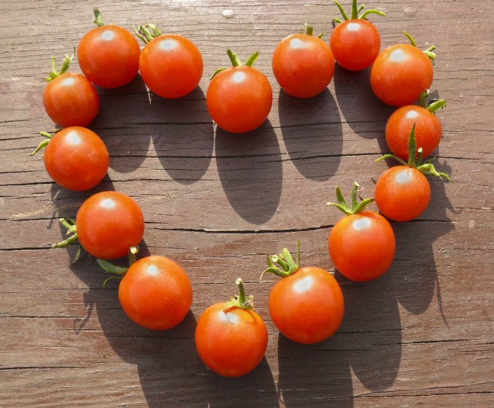 t9 7 Amazing Health Facts About Tomatoes
