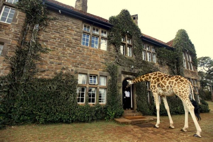 1231 Top 30 World's Weirdest Hotels ... Never Seen Before!