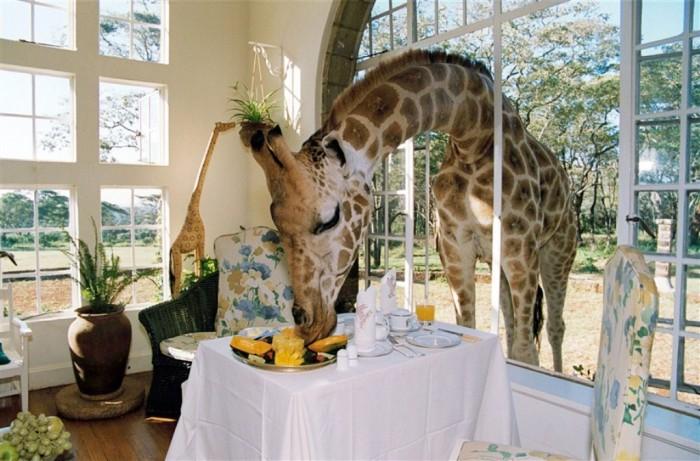 449AC912EFF625229708C9B92BEB9 Top 30 World's Weirdest Hotels ... Never Seen Before!
