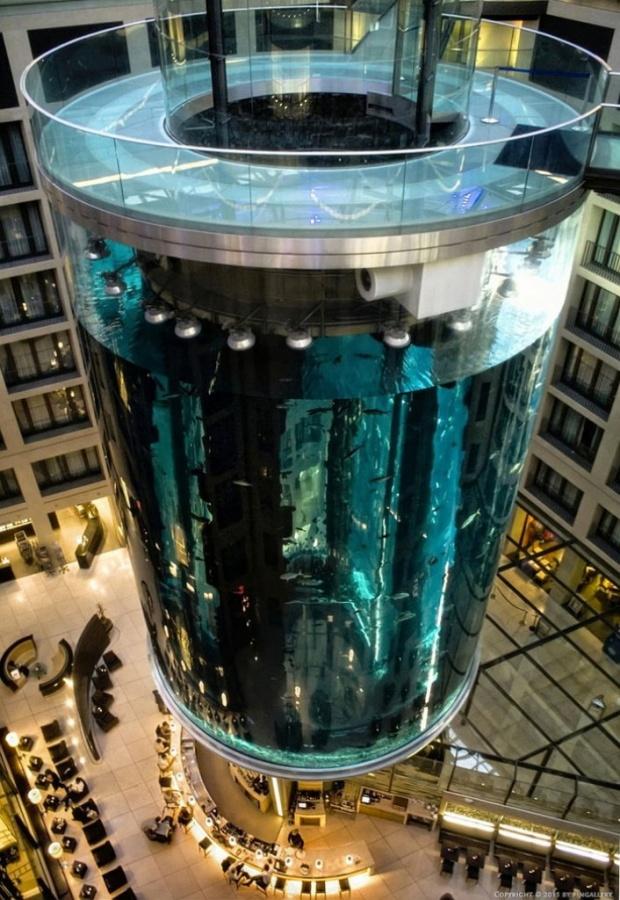 Aquadom_Aquarium_Raddison_Blu_4 The World's 20 Weirdest & Craziest Elevators