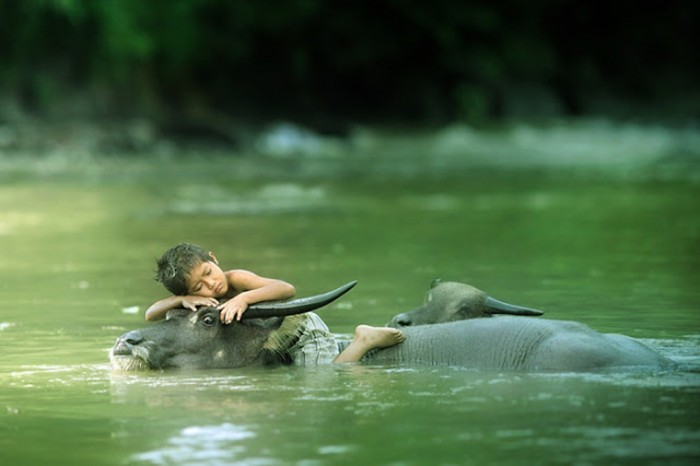 Beautiful-Photography-by-Asit73104-F Improve Your Photography Skills Following These Tips