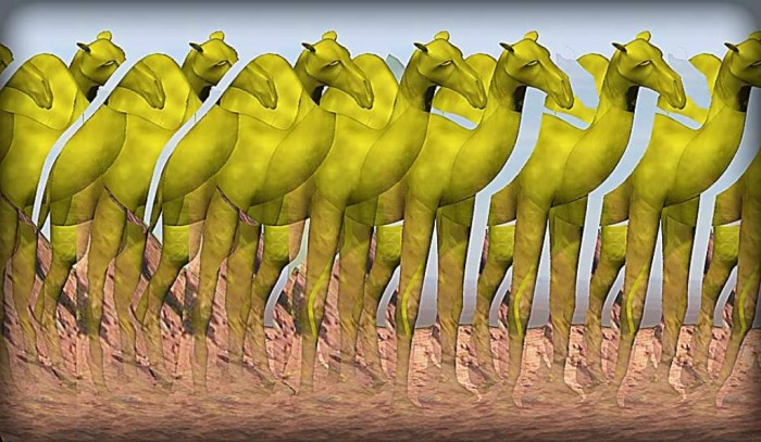 Camel__3D_Stereogram_by_3Dimka Challenge Your Mind Through Playing These Famous Mind Tricks