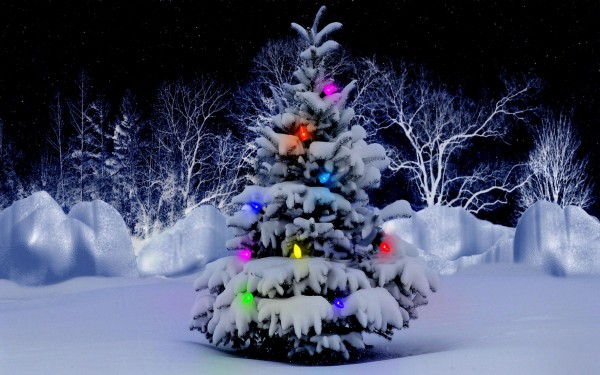 Christmas-Tree-With-Full-of-Lights-and-Snow-Decoration 79 Amazing Christmas Tree Decorations