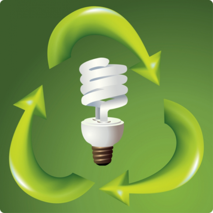 Energy-Saving-Bulb-resized-600 13 Easy-to-Follow Tips for Operating a Green Business