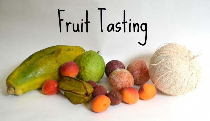 Fruit-Tasting-1024x595 Do You Know How to Train Your Child to Use the Five Senses?