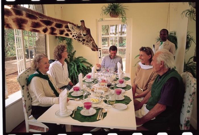 Giraffe-Manor5 Top 30 World's Weirdest Hotels ... Never Seen Before!