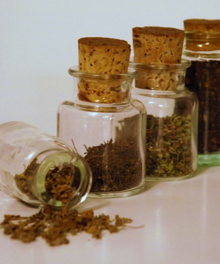 HERBS-IN-JARS 10 Easy-to-Follow Cooking Tips to Increase Your Savings