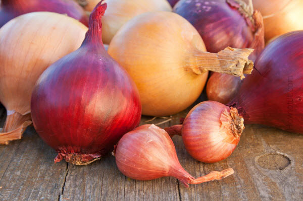 Health-Benefits-of-Onions 11 Tips on Mixing Antique and Modern Décor Styles