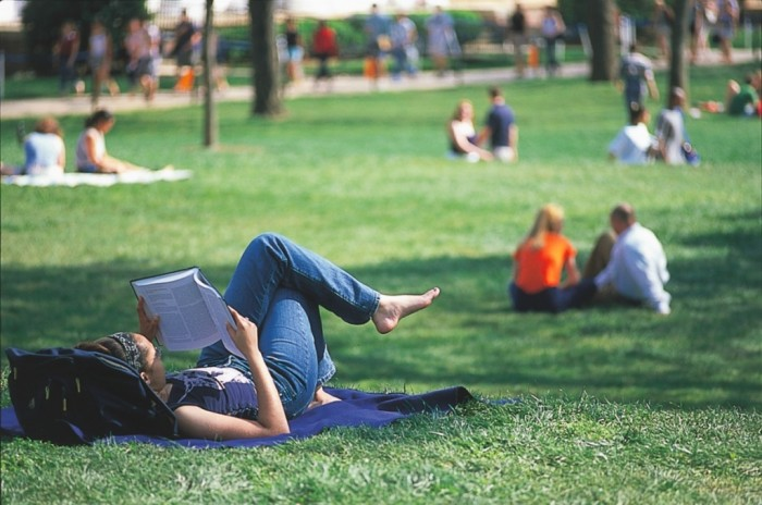 Student-studying-on-lawn 15 Study Tips for Better Test Taking & Getting Higher Grades