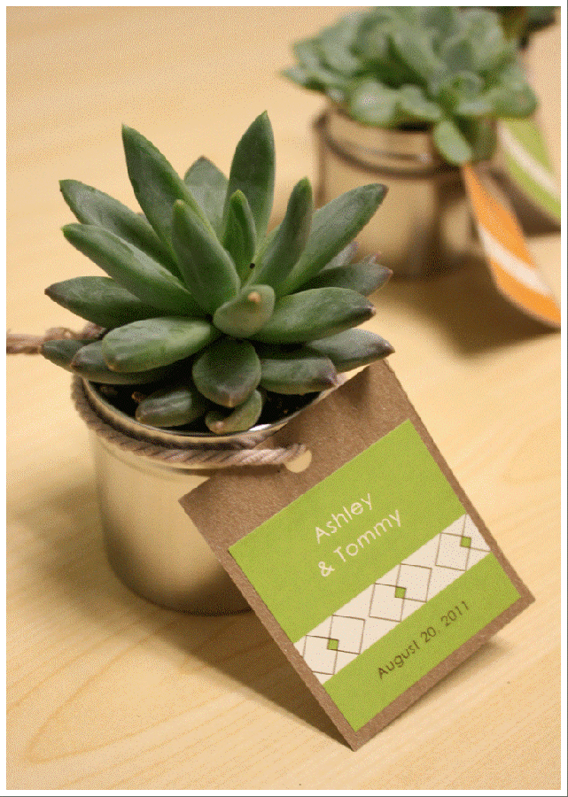 Succulent-Wedding-Favor-1 Save Money & Learn How to Make Your Own Wedding Favors