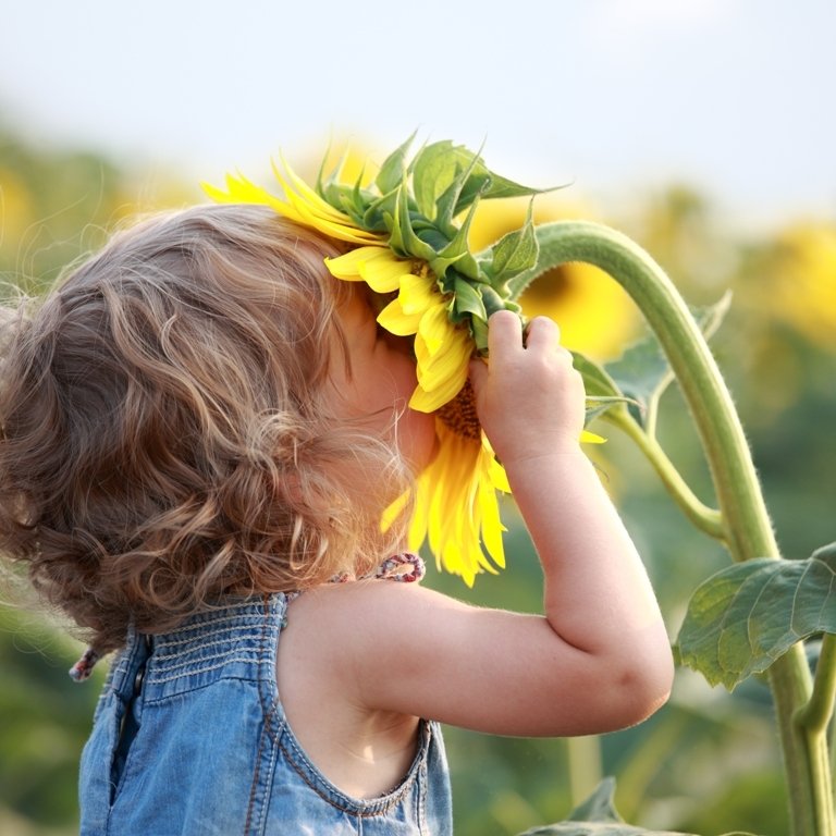 child-smelling-flower Do You Know How to Train Your Child to Use the Five Senses?