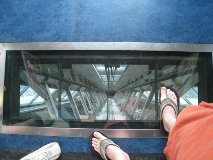 day-02-auckland-sky-tower-0191 The World's 20 Weirdest & Craziest Elevators