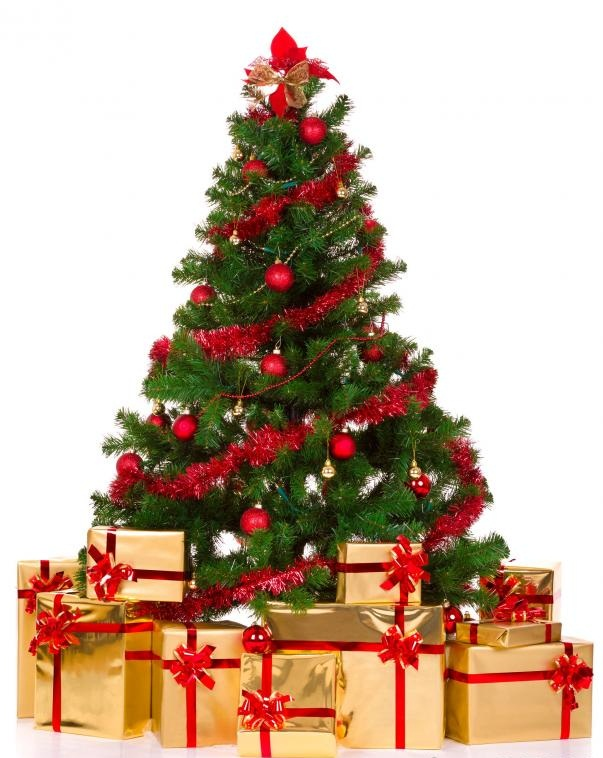 decorated-christmas-tree 79 Amazing Christmas Tree Decorations
