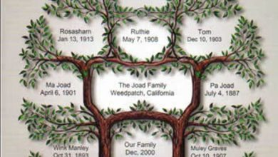 Photo of Research Your Family History to Know Who You Are