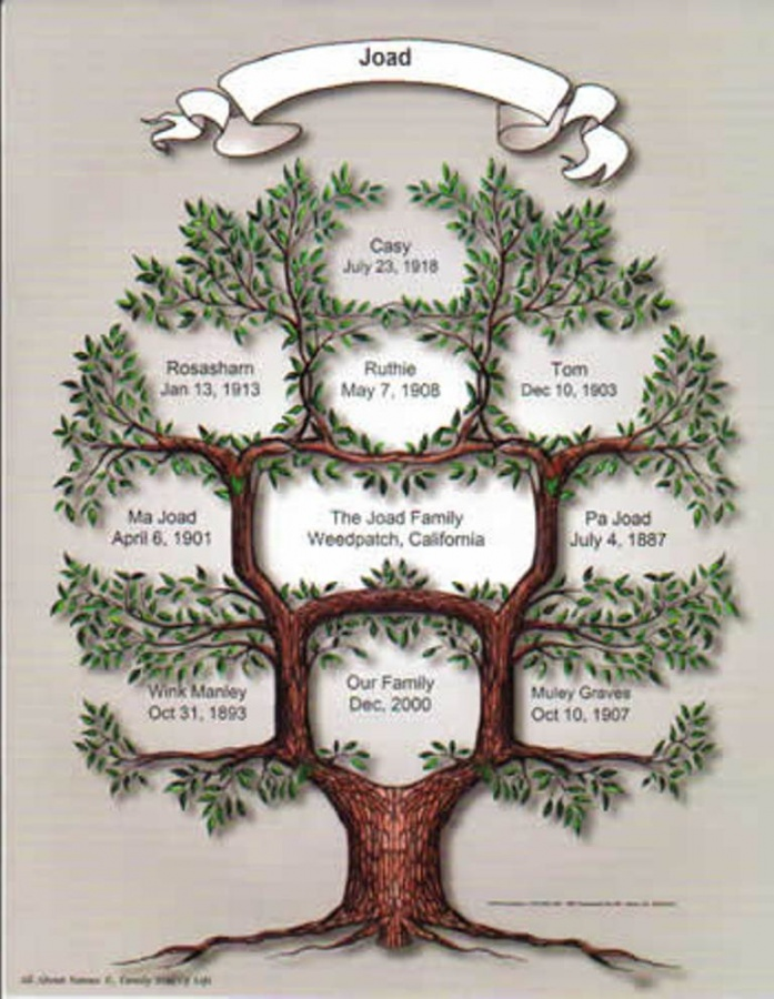 family_tree_of_life1 Research Your Family History to Know Who You Are