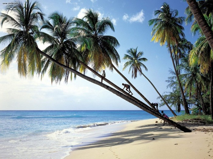 gibbs_beach_mullins_bay_barbados Top 10 Romantic Vacation Spots for Couples to Enjoy Unforgettable Time