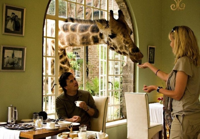 giraffe-manor-82 Top 30 World's Weirdest Hotels ... Never Seen Before!