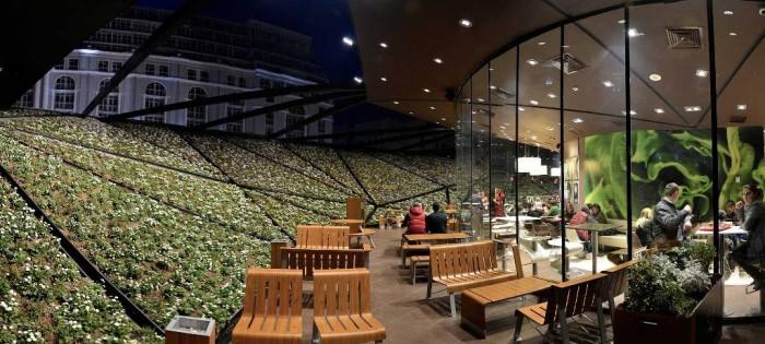 mcdonalds-modern-restaurant-usa Do You Dream of Starting and Running Your Own Restaurant Business?