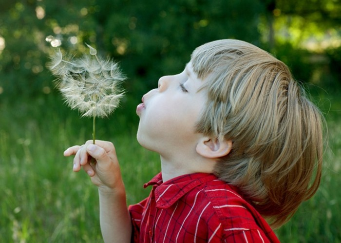 nature_activities_for_kids_page_image Do You Know How to Train Your Child to Use the Five Senses?