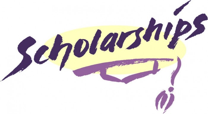 scholarships-best-plant-based-calcium Do You Have Any Idea about How to Secure More Scholarships?