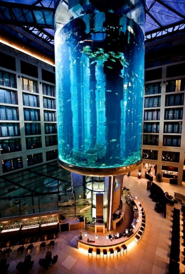 tumblr_m1o6ikSCEe1r2qqpmo1_500 The World's 20 Weirdest & Craziest Elevators