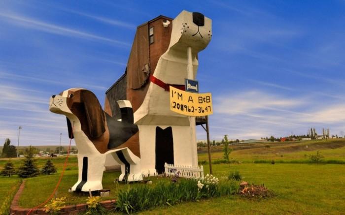ugly-dog_2395817k Top 30 World's Weirdest Hotels ... Never Seen Before!