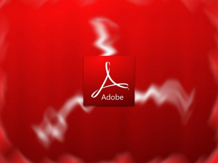 Adobe_9_0_Radial_Wall_by_Vinis13-800x600 Top 10 Best Software Companies to Work for