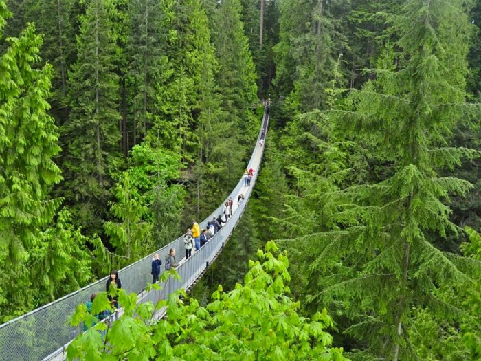 Capilano-Suspension-Bridge The World's 15 Scariest Bridges that Will Freeze Your Heart