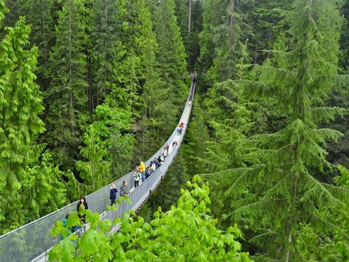 Capilano-Suspension-Bridge The World's 15 Scariest Bridges that Will Freeze Your Heart