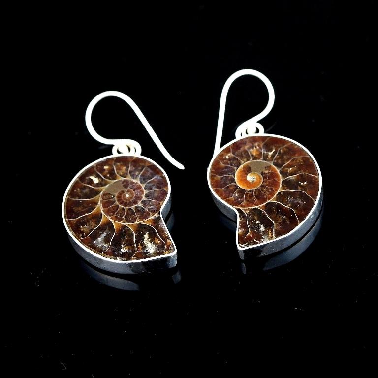 E38_Ammonite_Shell_Earrings 45 Unusual and Non-traditional Earrings