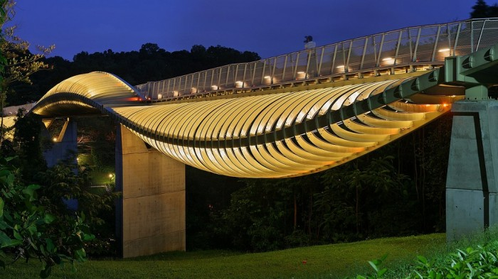 Henderson-Waves-Bridge Have You Ever Seen Breathtaking & Weird Bridges Like These Before?