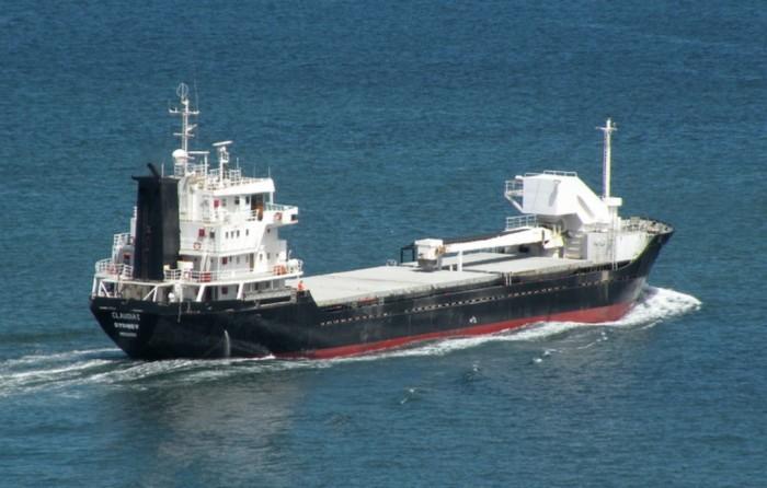 Ocean-Bulk-Shipping Top 10 Best Shipping Companies in Dubai