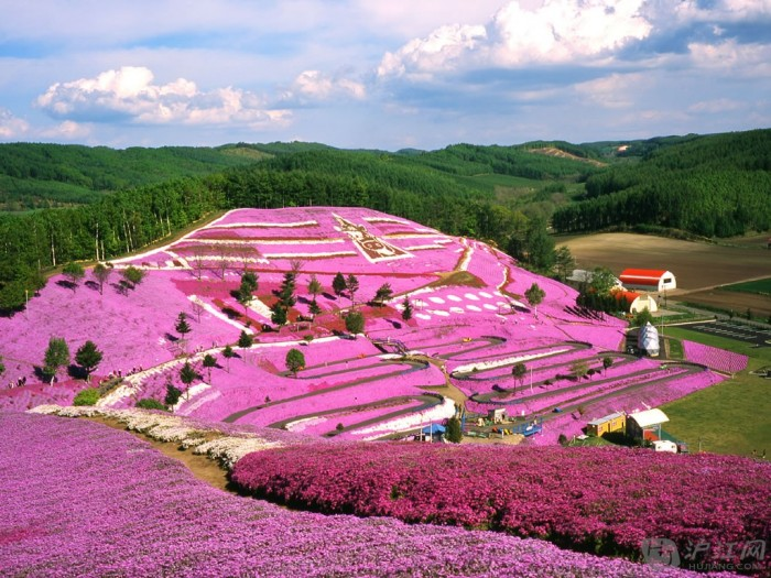 Peoples-Republic-of-China-Pink-Flowers-Hillside-Japan Top 10 Richest Governments in the World