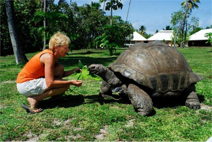 Seychelles-Seychelles_WOMAN_and_TORTOISE_89880b588c8a4d08bcf31c925e86c0ed Top 10 Best Countries to Visit in the World 2017