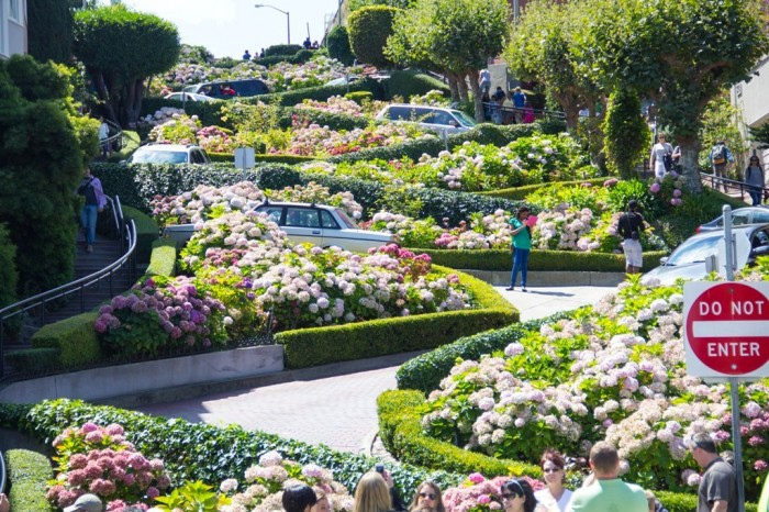 lombard-street 55 Most Fascinating & Weird Roads Like These Before?