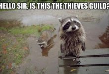 Photo of Not Just Animals! They Are Real & Incredible Thieves