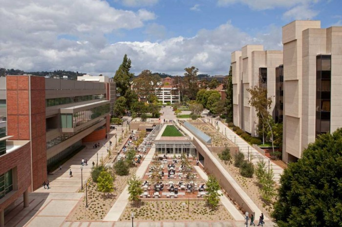 undine-prohl-2 Top 10 Public & Private Engineering Colleges in the World